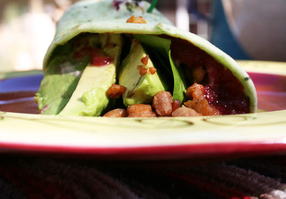 Close up of Tempeh Avocado Wrap with Tahini and Cranberry Sauce on a plate.