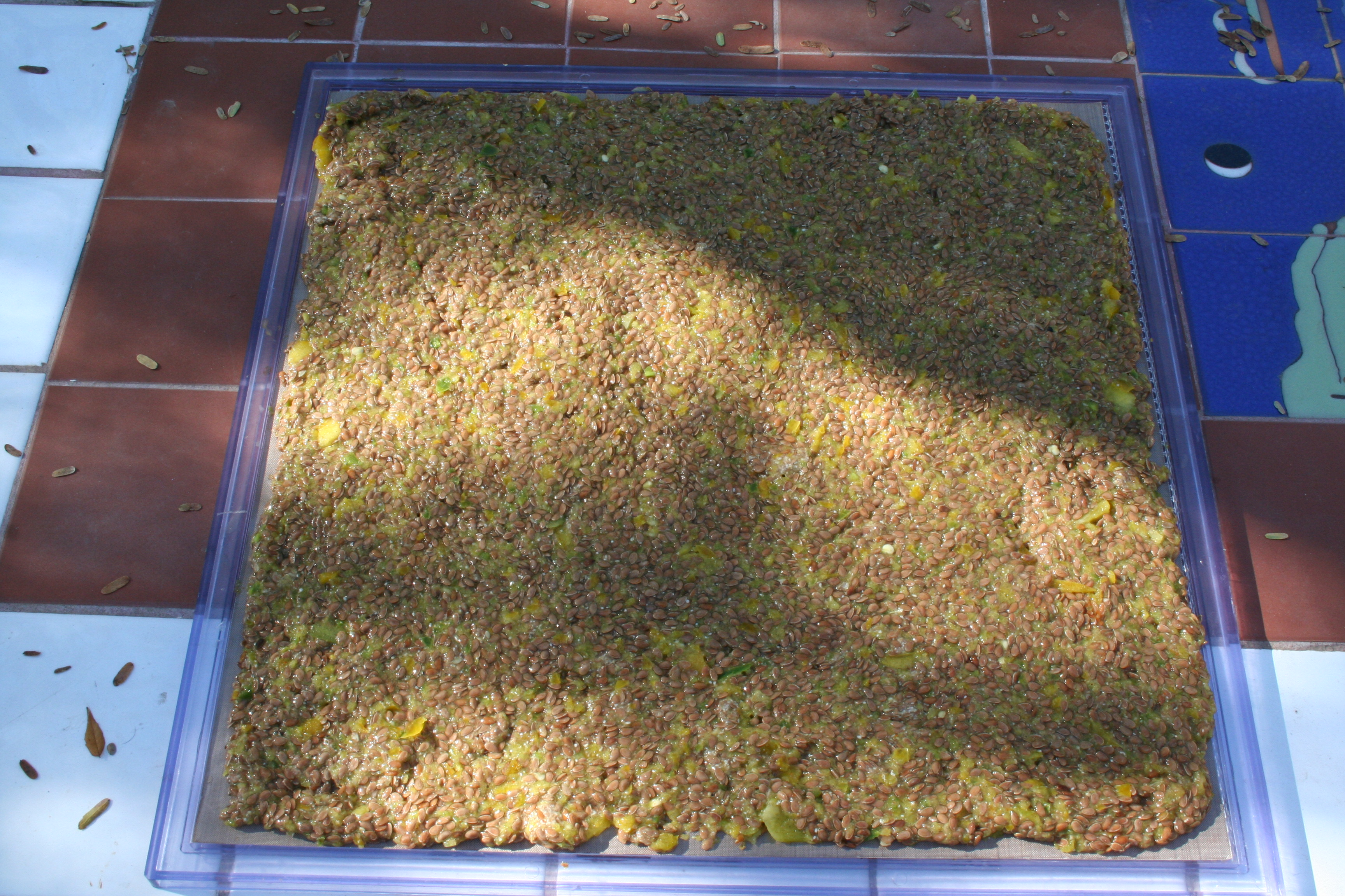 Spicy Flax Crackers on dehydrator sheet.