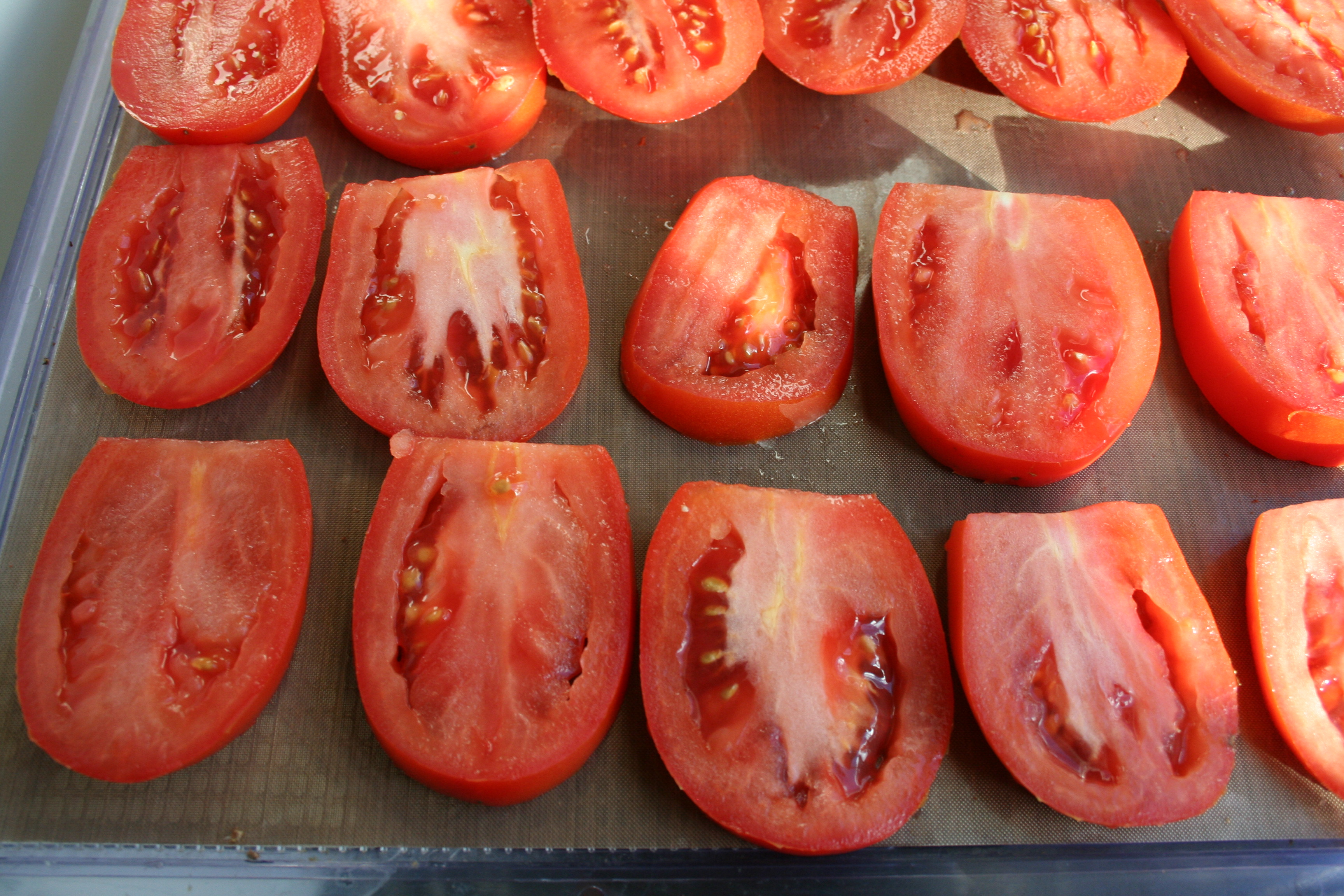 Tomatoes before being dehydrated.