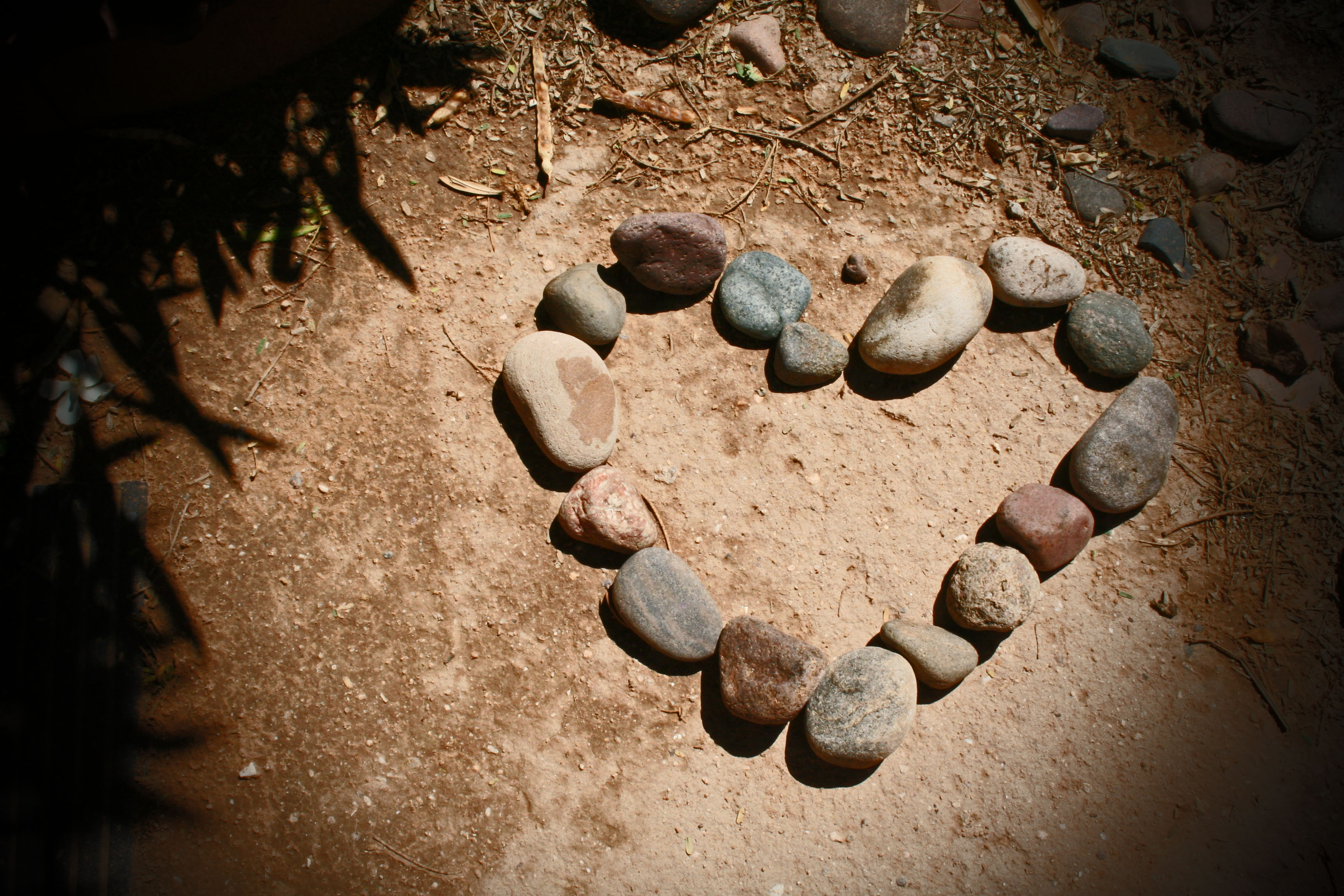 Rocks in the shape of a heart on the ground.