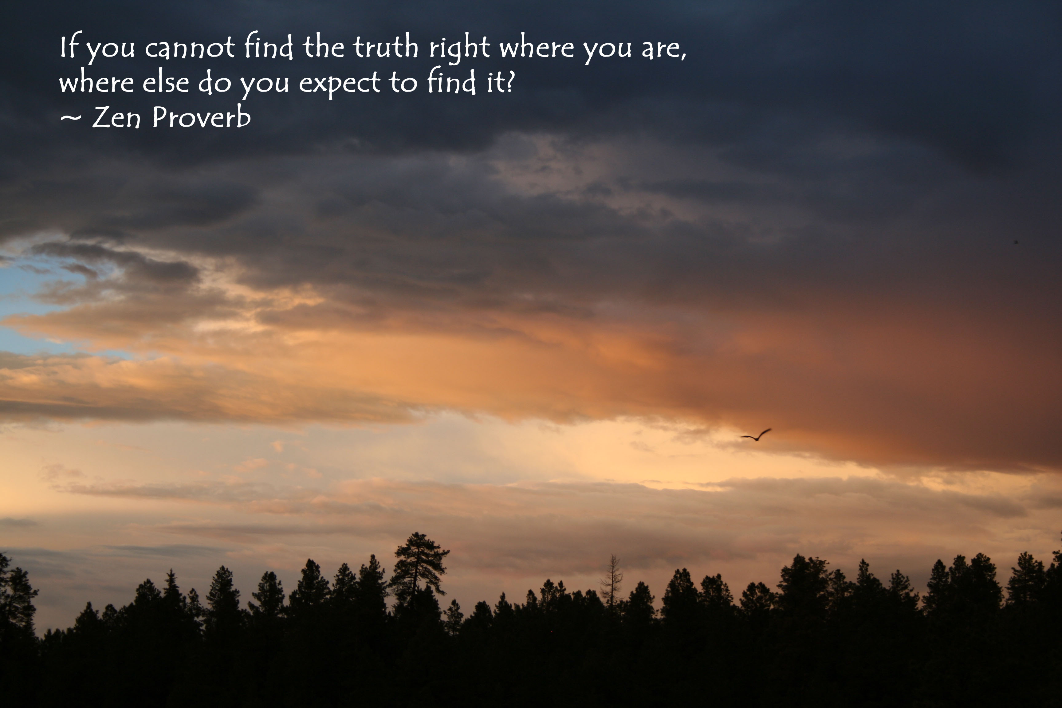 """If you cannot find the truth right where you are, where else do you expect to find it?"" - Zen proverb written on photo of sunset above trees."