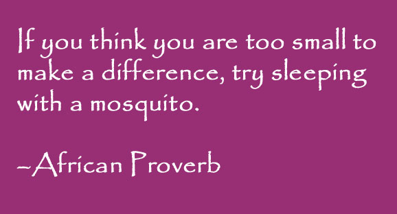 """""""If you think you are too small to make a difference, try sleeping with a mosquito."""" - African proverb written on a dark pink background."""