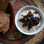 Caramelized Red Onion Dip