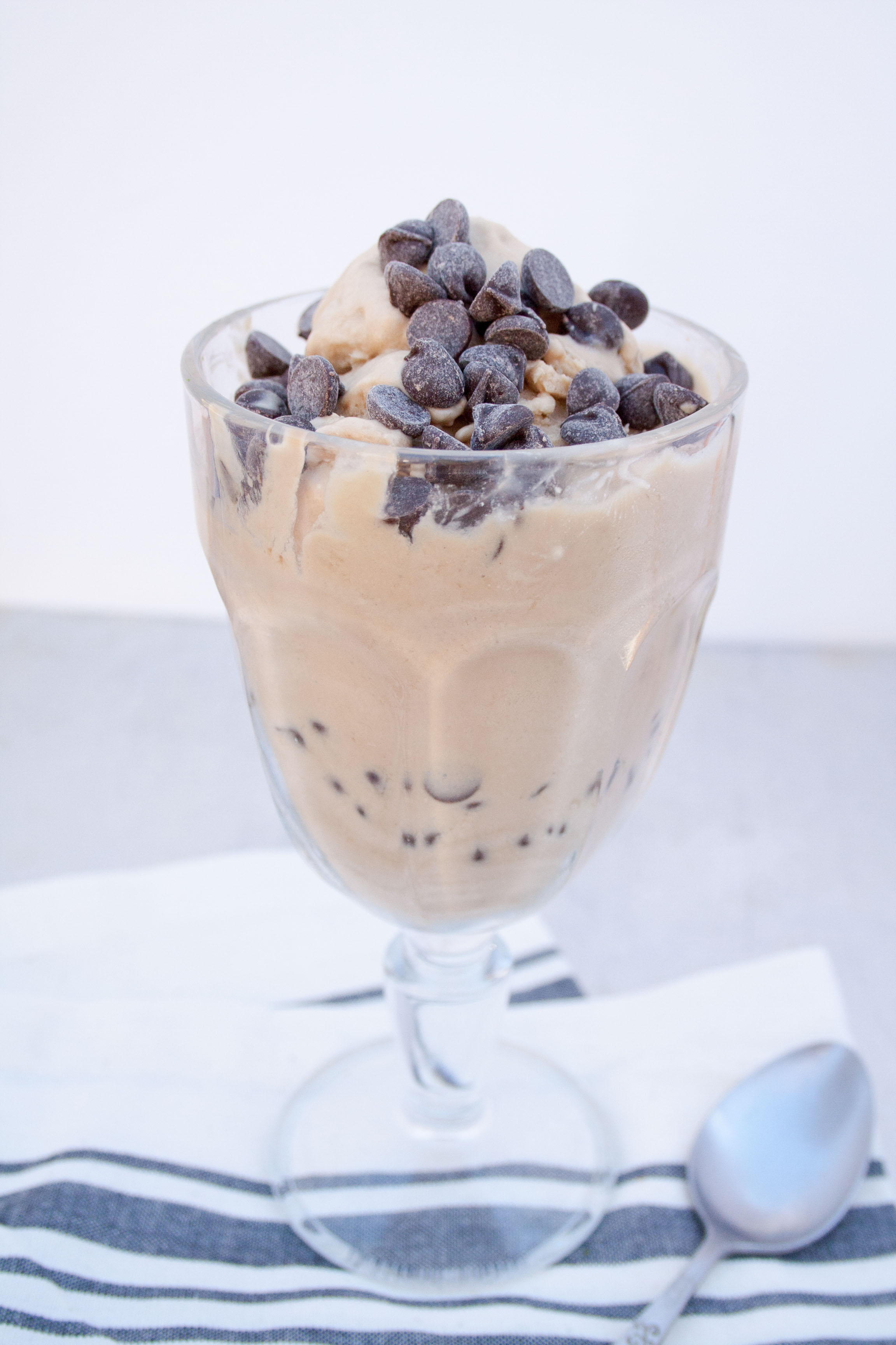 Vegan White Russian Ice Cream with chocolate chips on top.