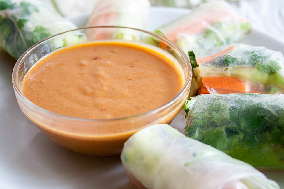 Peanut Sauce close up with spring rolls.