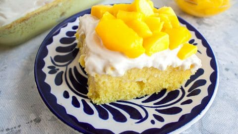 2 Ingredient Mango Cake