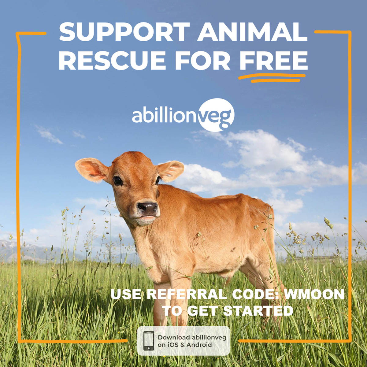"A photo of a cow with the text ""Support Animal Rescue For Free, abillionveg app, and referral code WMOON to get started""."