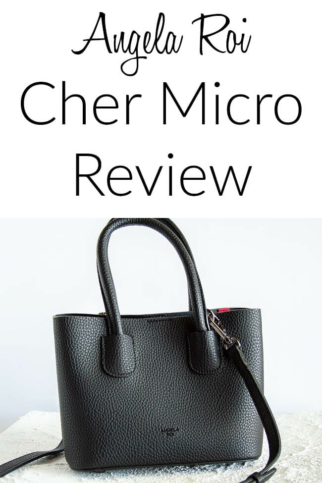 """Cher Micro photo with text """"Angela Roi Cher Micro Review"""""""