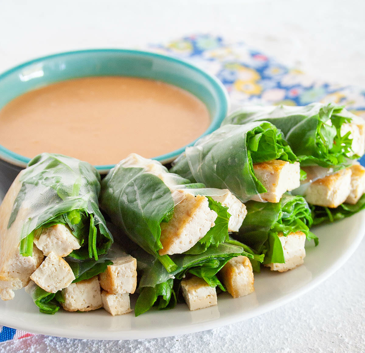 Tofu Spring Rolls with Peanut Dipping Sauce on plate close up.
